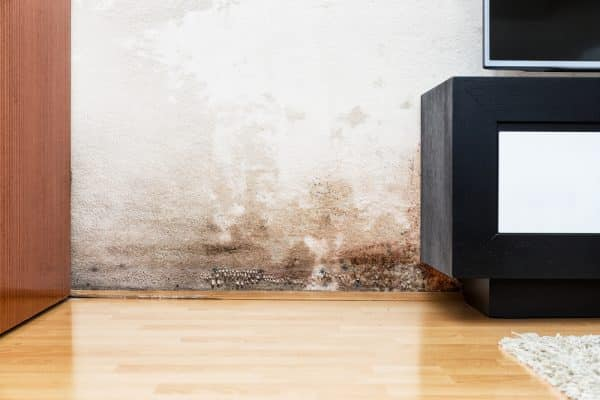 What Causes Poor Indoor Air Quality